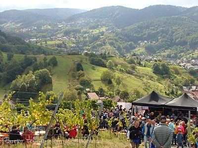 Kulinarischer Weinwandertag Bühlertal